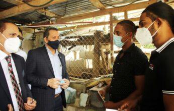 PROMIPYME e Industria y Comercio incentivarán negocio del Larimar para beneficiar artesanos